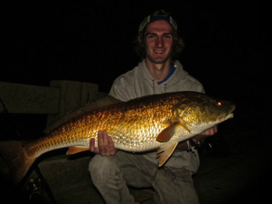 4-15 Caleb 37 5 bull red   -PERSONAL RECORD-