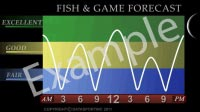 channel7 fish and game forecast