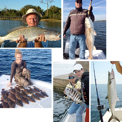 bayfishing-01-05-collage
